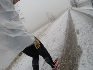 perfekte Bedingungen zum Laufen :-)